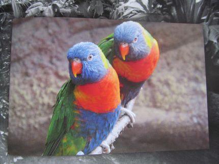 Farbvergleich fotopuzzle.de