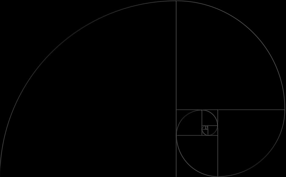 Die Fibonacci Spirale ohne Fotohintergrund