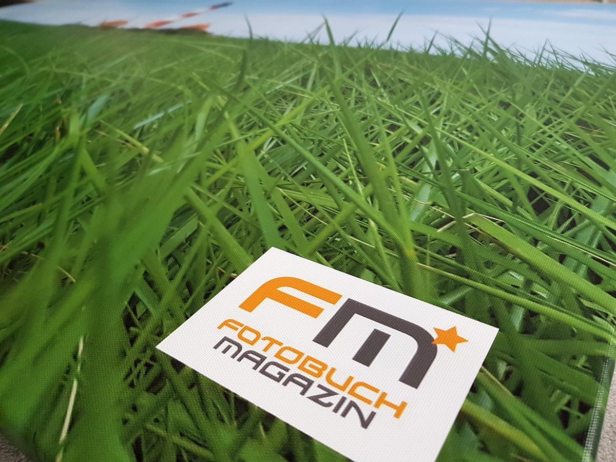 Das FM* - Logo